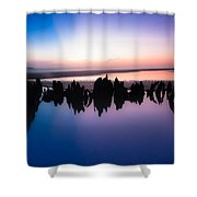 Driftwood Skyline Shower Curtain