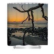 Driftwood Sunrise Shower Curtain