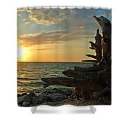 Driftwood Sunset Shower Curtain