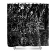 Drippin With Spanish Moss At Middleton Place Shower Curtain