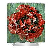 Dripping Poster Rose On Green Shower Curtain