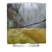 Dripping With Diamonds Shower Curtain