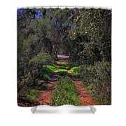 Driveway To Home Shower Curtain