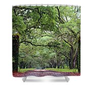 Driveway To The Past Shower Curtain