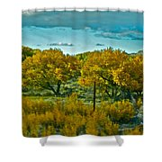 Driving Foliage Shower Curtain