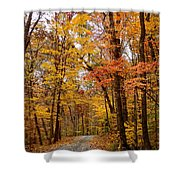 Driving Home Shower Curtain