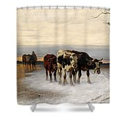 Driving The Herd Home In Wintry Landscape Shower Curtain