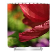 Drop In Shower Curtain
