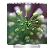 Drop Of Life Shower Curtain