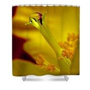 Drop On Flower Stalk Shower Curtain
