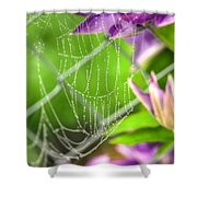 Droplets Of Fog Shower Curtain