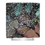 Droplets Over Web Shower Curtain