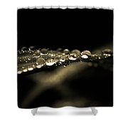 Droplets2 Shower Curtain