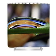 Vein Of Gold 4x6 Format Shower Curtain