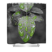 Drops Of Color 1 Shower Curtain