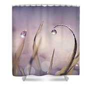 Drops Of Light Shower Curtain