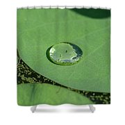 Drops On Lotus Leaf Shower Curtain