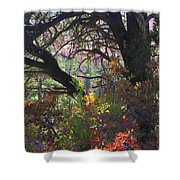 Drought Fall Shower Curtain