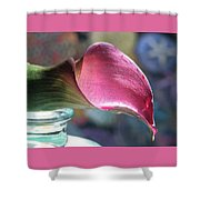 Drowsy Calla Lily Shower Curtain