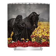 Druids In The Fields Shower Curtain
