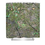 Dry And Thirsty Land Shower Curtain