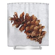 Dry Cone Shower Curtain