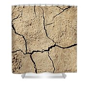 Dry Cracked Earth And Green Leaf Shower Curtain