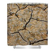 Dry Cracked Lake Bed Shower Curtain
