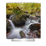 Dry Creek II Shower Curtain