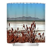 Dry Grasses At The Great Salt Lake Shower Curtain