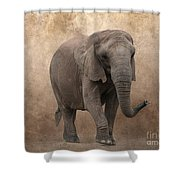 Dry Lands Shower Curtain