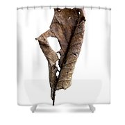 Dry Leaf Shower Curtain