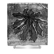 Dry Leaf Collection Bnw 1 Shower Curtain