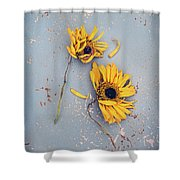 Dry Sunflowers On Blue Shower Curtain