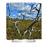 Dry Tree Shower Curtain
