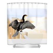 Drying Out Bird Shower Curtain