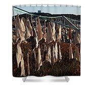 Drying Pieces Of Salt Cod In Bonavista, Nl, Canada Shower Curtain