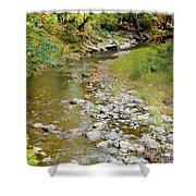 Drying Up River 3 Shower Curtain