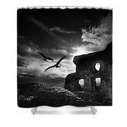 Dryslwyn Castle 3b Shower Curtain