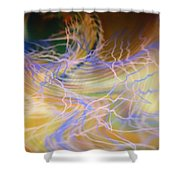 Dsc01551 Shower Curtain