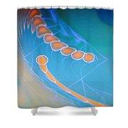 Dsc01578 Shower Curtain