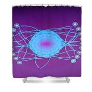Dsc01637 Shower Curtain