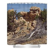 Dsc01894 Shower Curtain