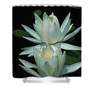 Dual Lilies Shower Curtain