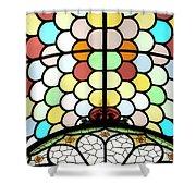 Dublin Art Deco Stained Glass Shower Curtain