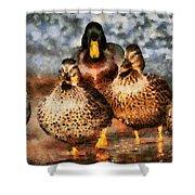 Duck - Id 16235-220308-3425 Shower Curtain