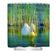 Duck On A Mission Shower Curtain