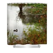 Duck On A Pond Shower Curtain