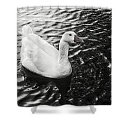 Duck On The Black Sea Shower Curtain