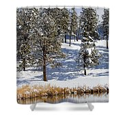 Duck Pond In Colorado Snow Shower Curtain